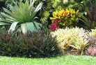 Albany Landscape consultants 14