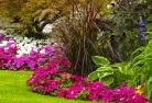 Albany Landscape consultants 49