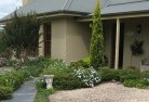 Albany Planting garden and landscape design 50