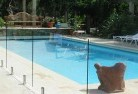 Albany Swimming pool landscaping 5