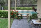 Albany Swimming pool landscaping 9