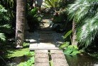 Albany Tropical landscaping 10