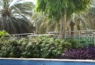 Albany Tropical landscaping 13