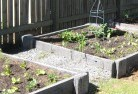 Albany Vegetable gardens 9